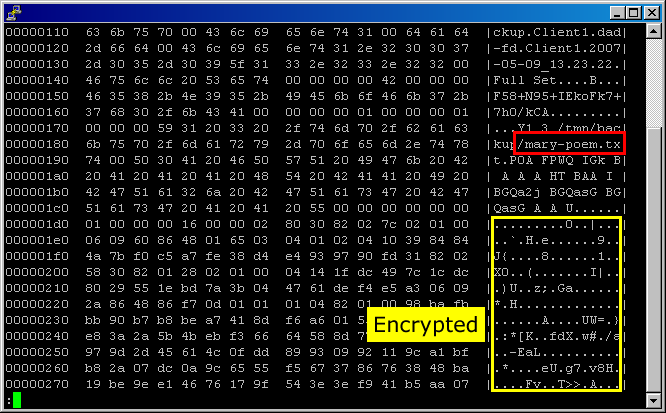 Bacula encrypted