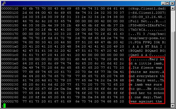 Bacula w/o encryption
