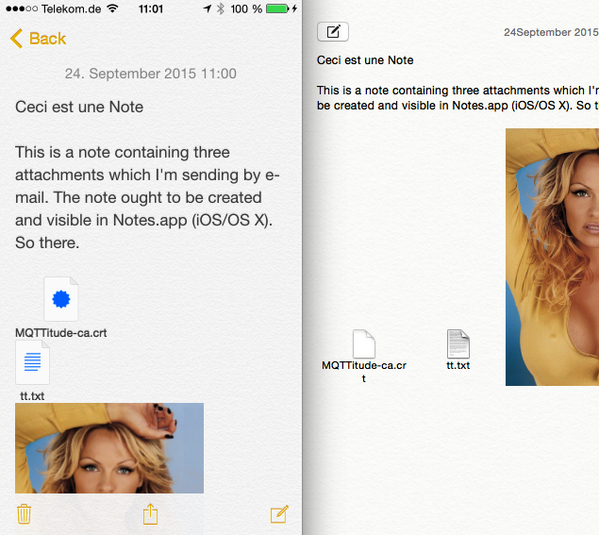 Notes in iOS and OSX