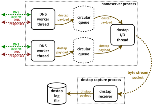 dnstap enabled DNS server (from project)
